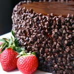 chocolate pecan torte with strawberry buttercream