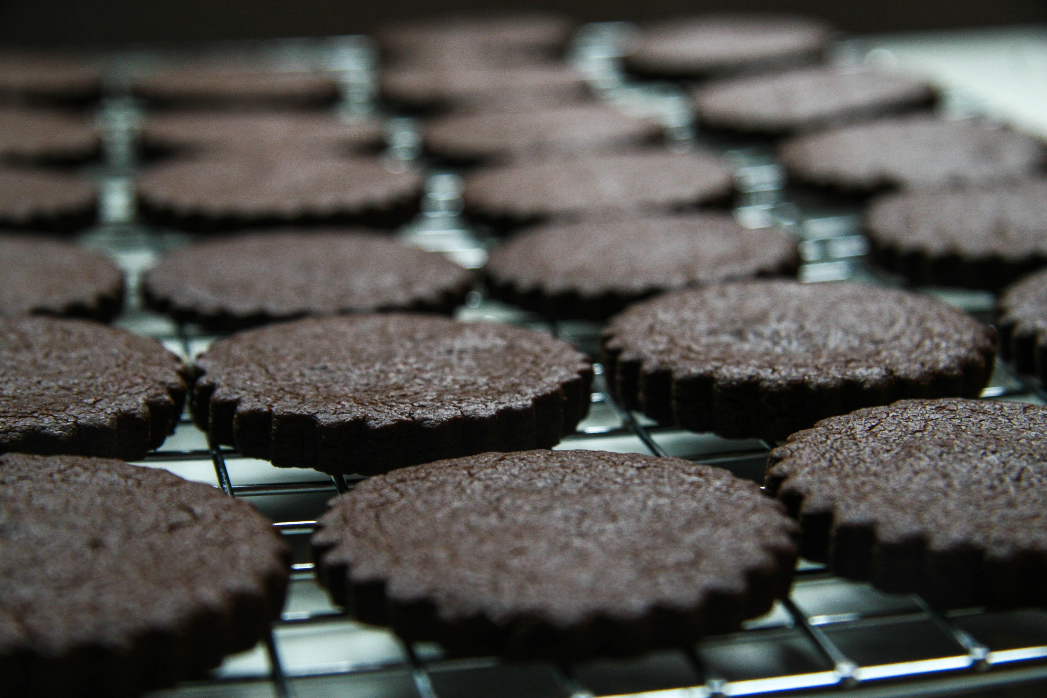 homemade oreos recipe 3