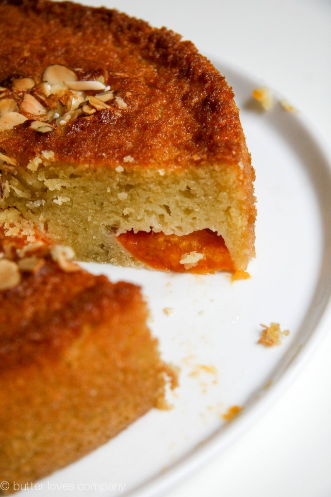 almond-apricot-olive-oil-cake-recipe-12