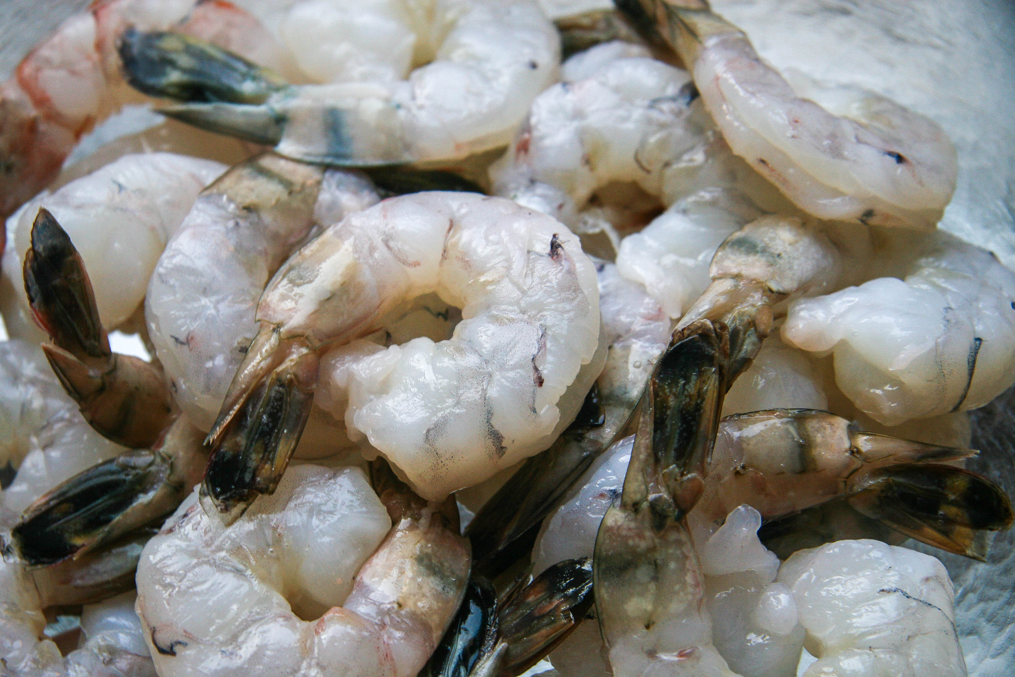 jerk shrimp recipe 2