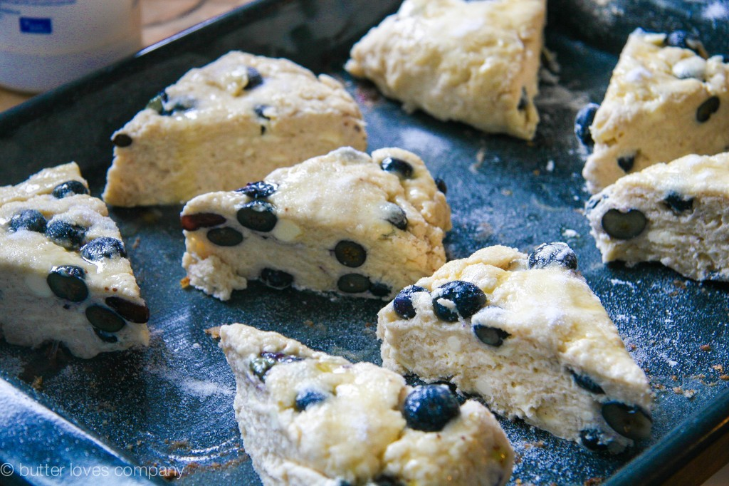 blueberry buttermilk scones with cinnamon sugar butter 5