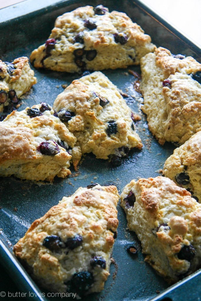 blueberry buttermilk scones with cinnamon sugar butter 8