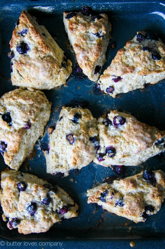 blueberry buttermilk scones with cinnamon sugar butter 9