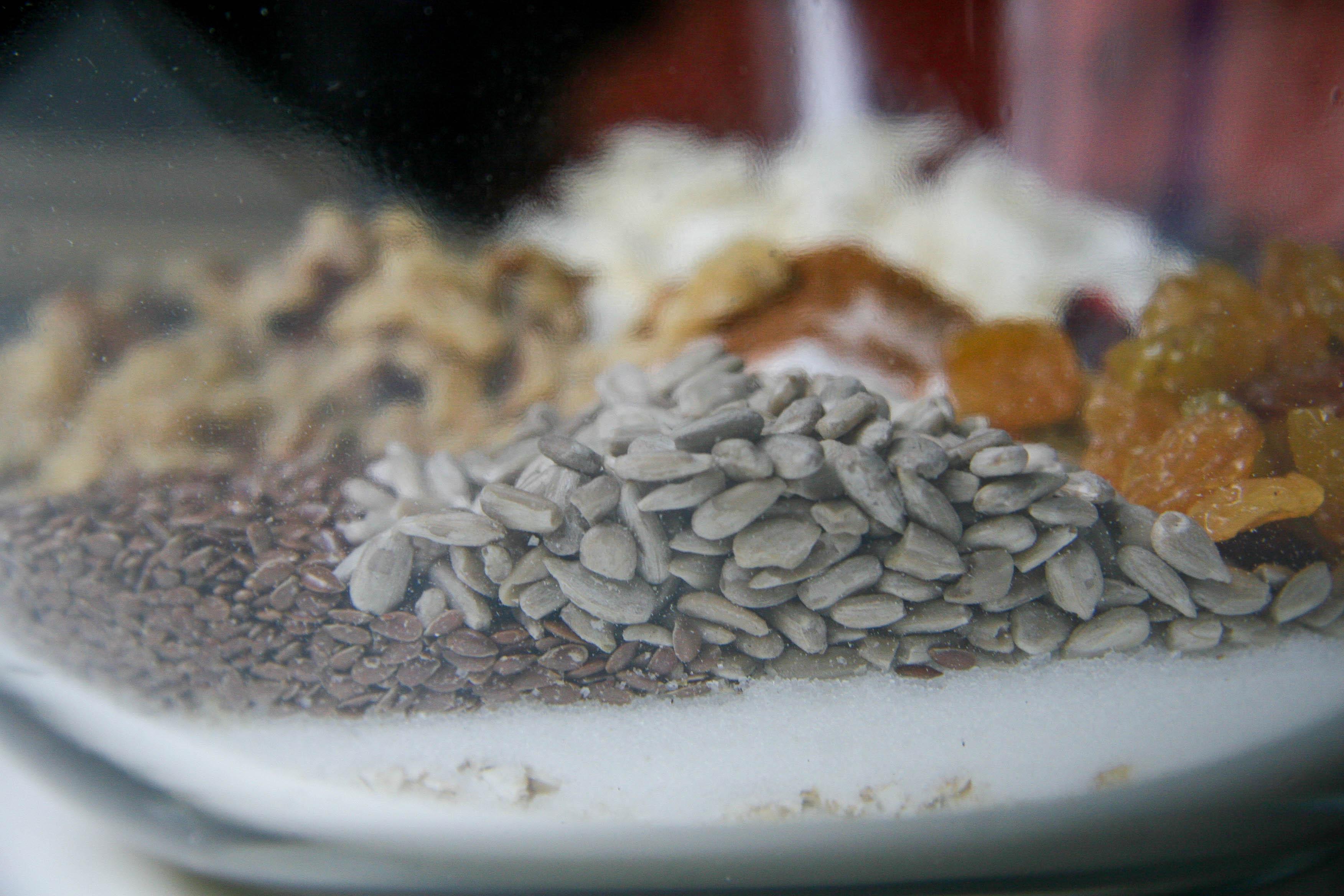 chewy-homemade-granola-nature-bars-recipe-3