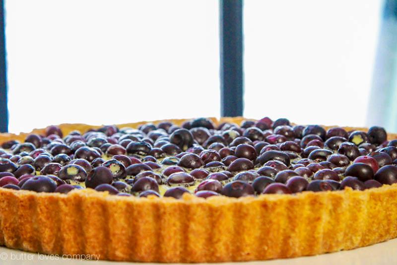 blueberry-lemon-cream-tart-4